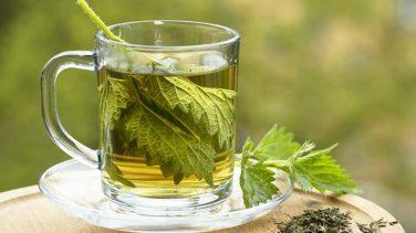 Akşam Yemeğinden 2 Saat Sonra Isırgan Çayı İçin…Neden Mi? İşte Detaylar