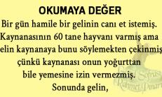 O-KUMA-YA DE-GER