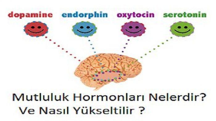 Serotonin nasıl hissettirir: Neşeli, c-anlı, zinde