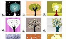Bir Ağaç Seç ve Bilinmeyen Kişiliğin Hakkında Gerçek Bilgi Sahibi Ol.