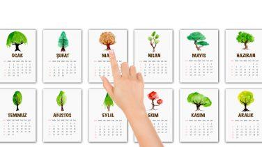 Doğum ağacın seninle ilgili neler söylüyor?